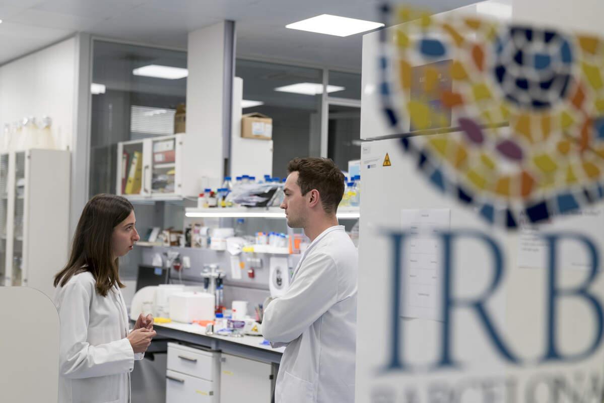 Investigadors de l'IRB