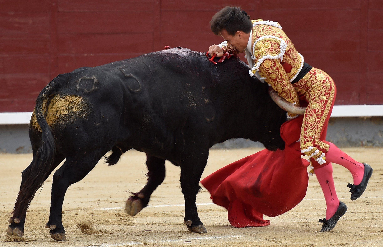 Gonzalo Caballero a la plaça de toros  Europa Press