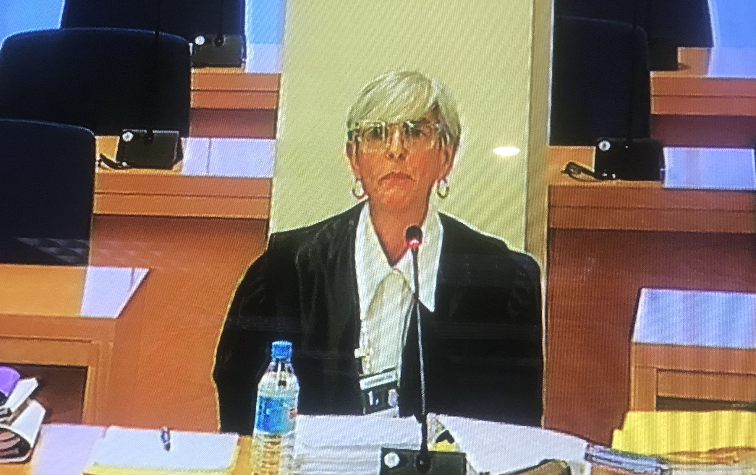 Olga Tubau durant les qüestions prèvies