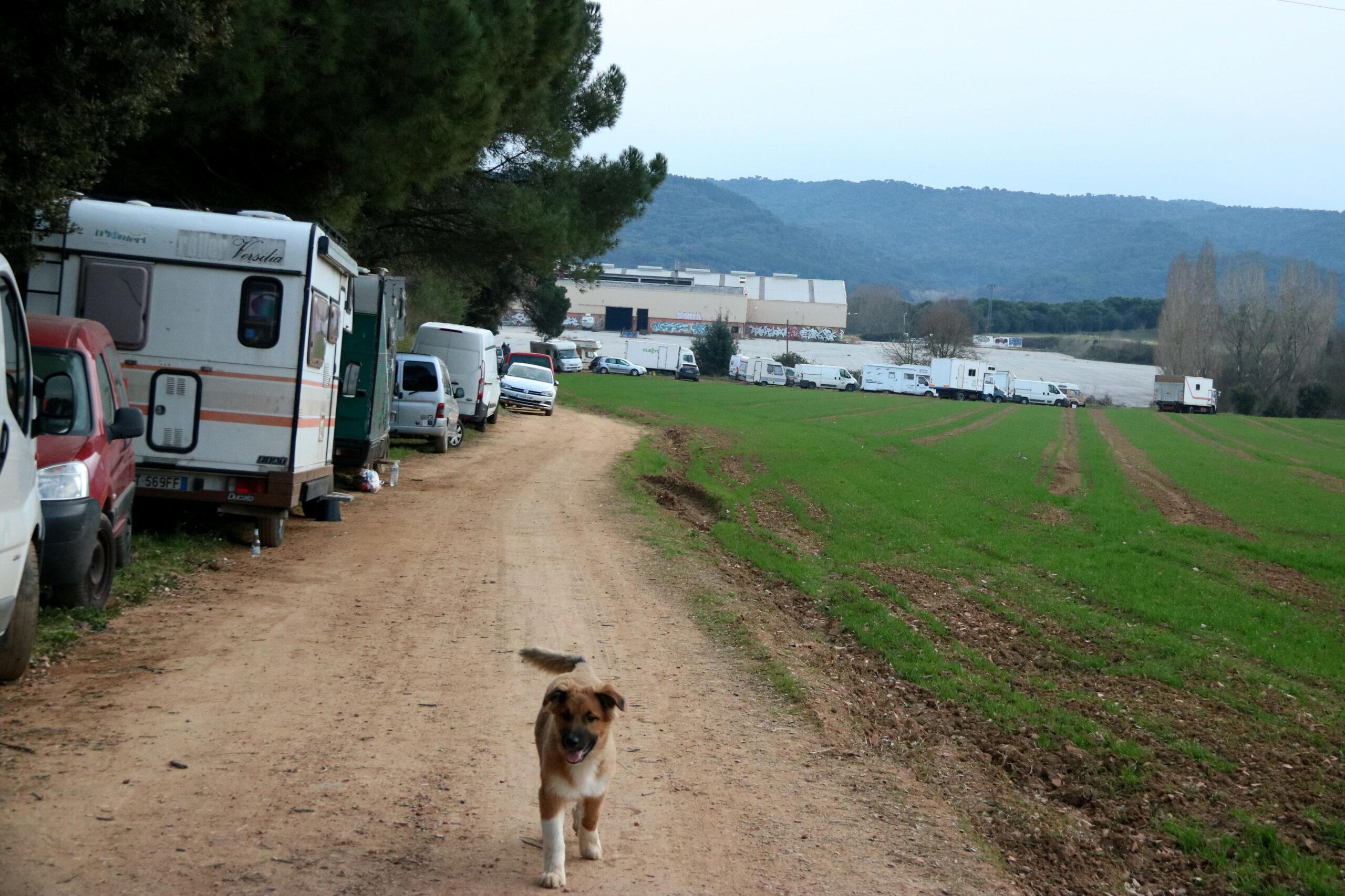 Pla obert de diversos vehicles aparcats a tocar de la 'rave' de Llinars del Vallès. Imatge de l'1 de gener del 2021. (Horitzontal)