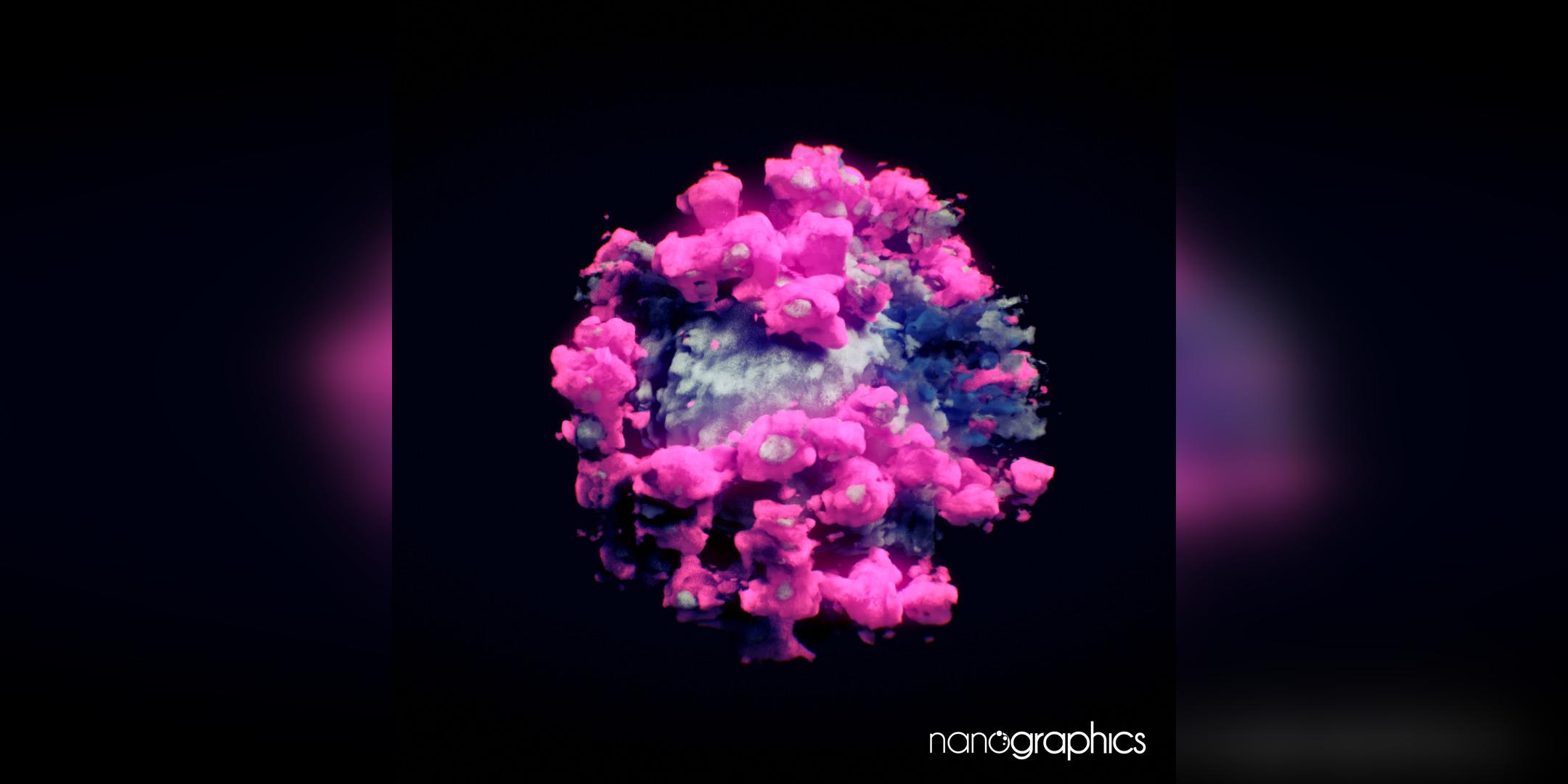 El coronavirus retratat per Nanographics