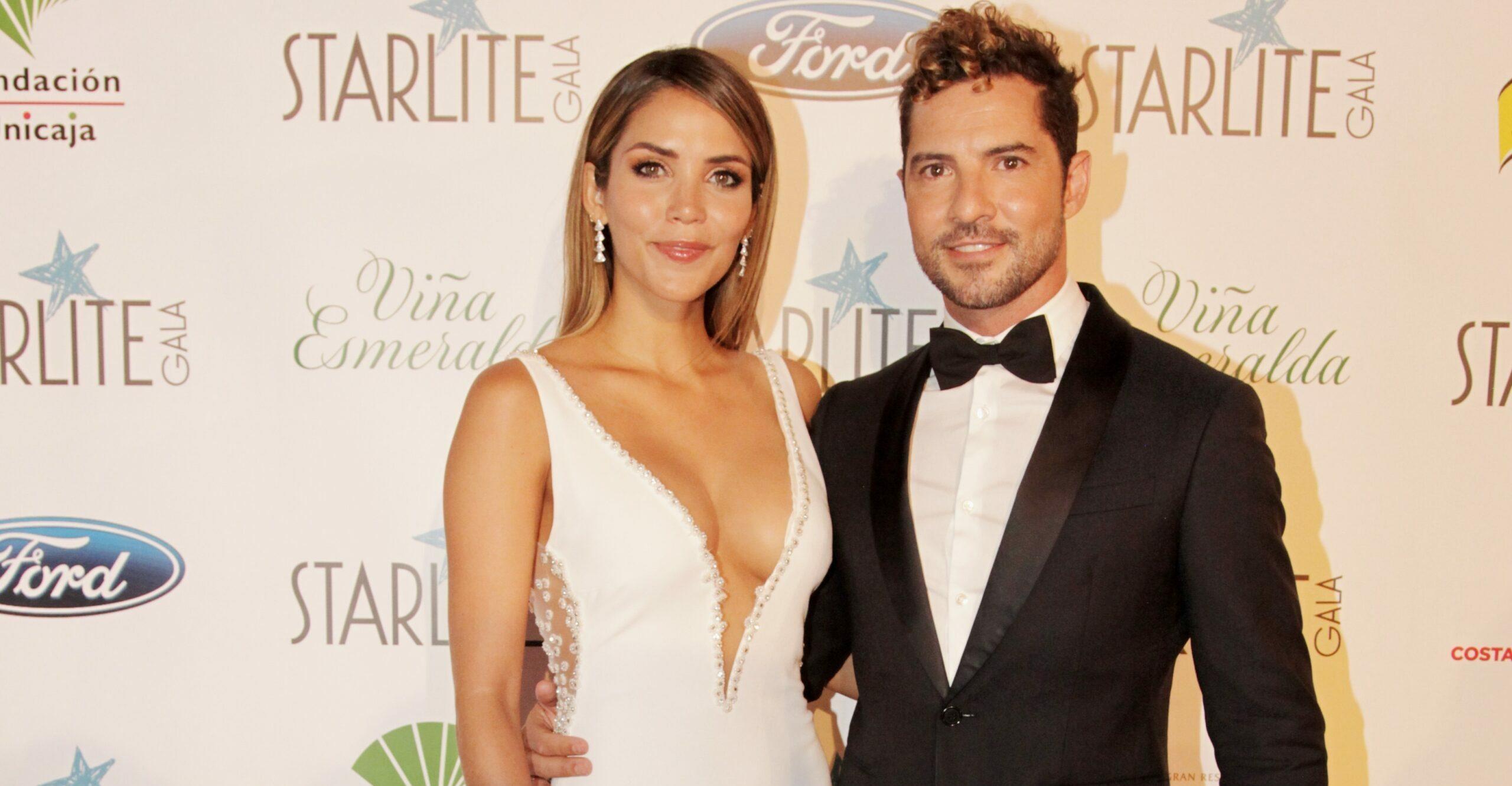 David Bisbal i Rosanna Zanetti, a la gala Starlite - Europa Press