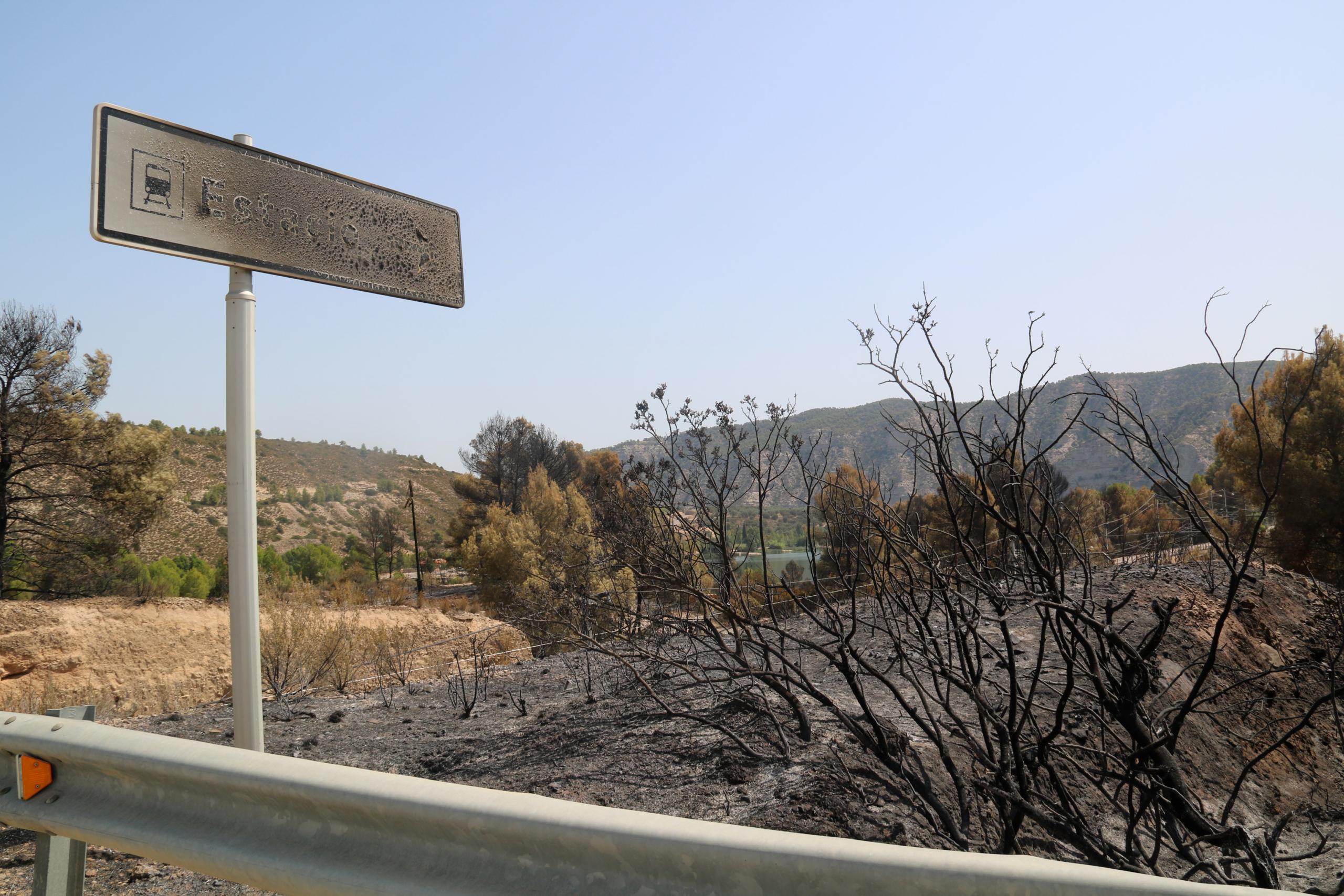 Una senyal cremada en una de les zones calcinades de l'incendi de la Pobla de Massaluca / ACN