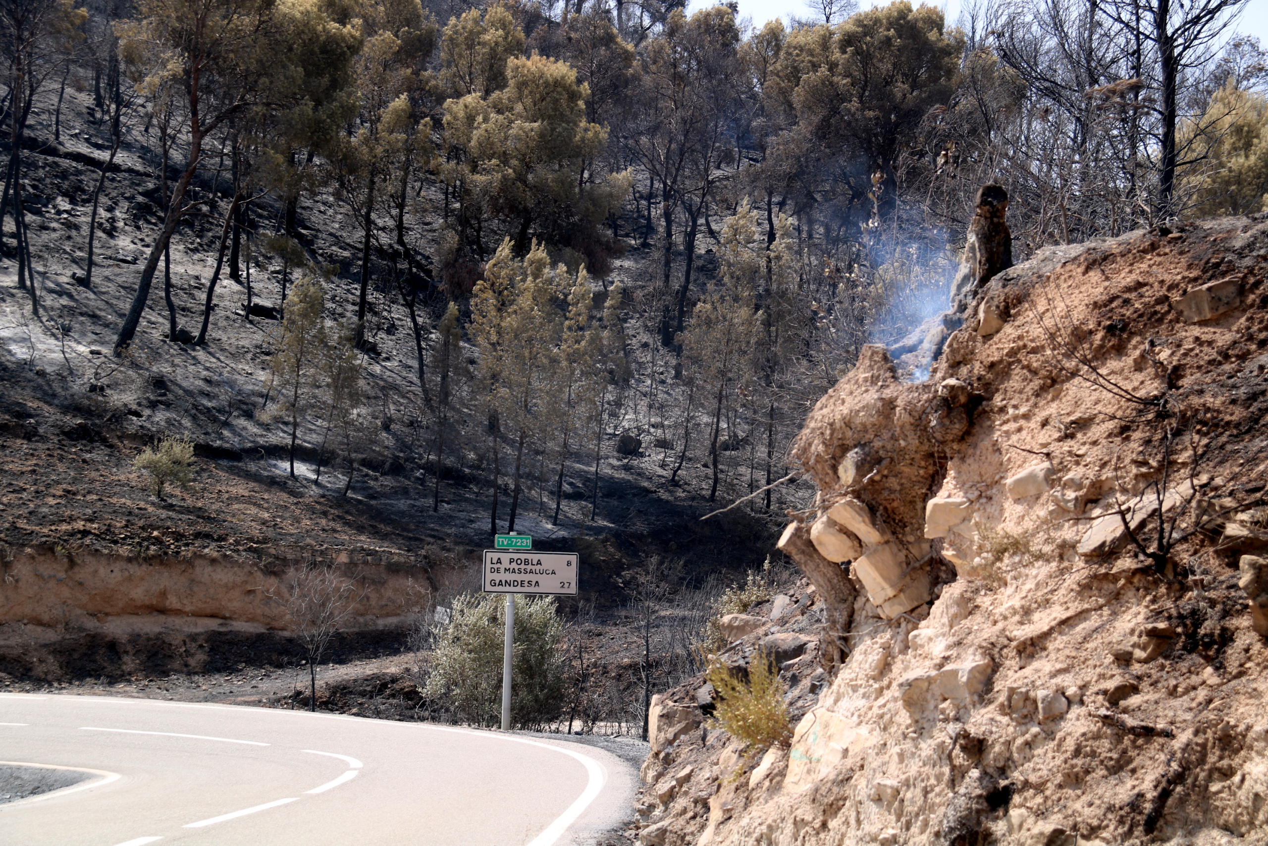 Una de les zones calcinades de l'incendi de la Pobla de Massaluca   ACN