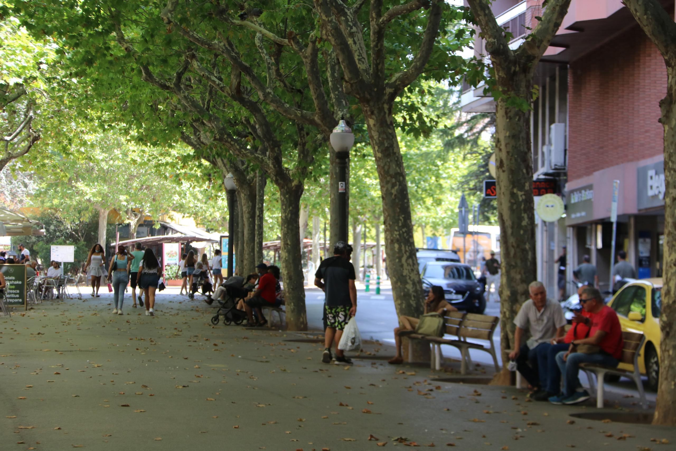 Gent asseguda i passejant per l'ombra al Passeig de Pere III de Manresa / ACN