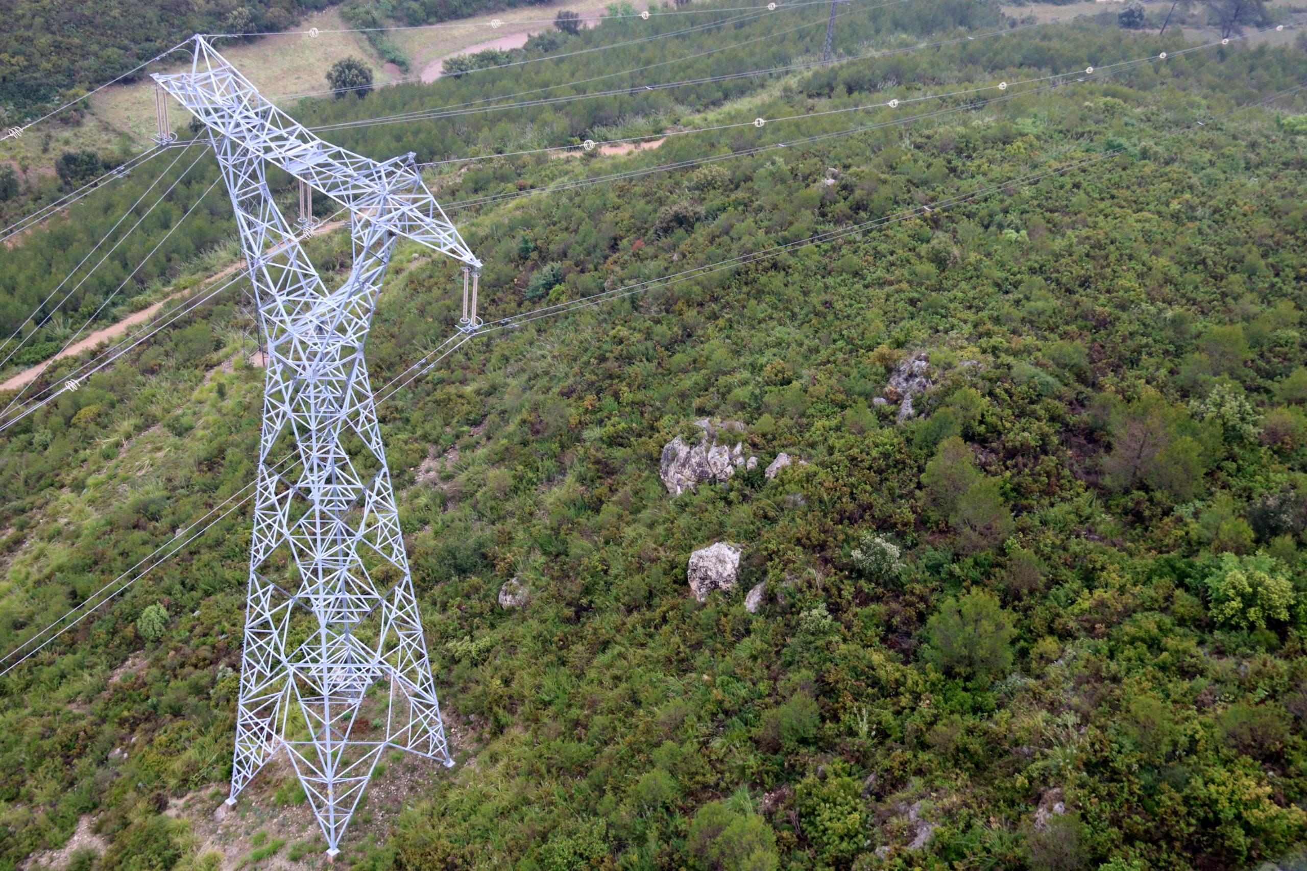 Una torre d'una línia d'alta tensió d'Endesa a l'Alt Penedès / ACN