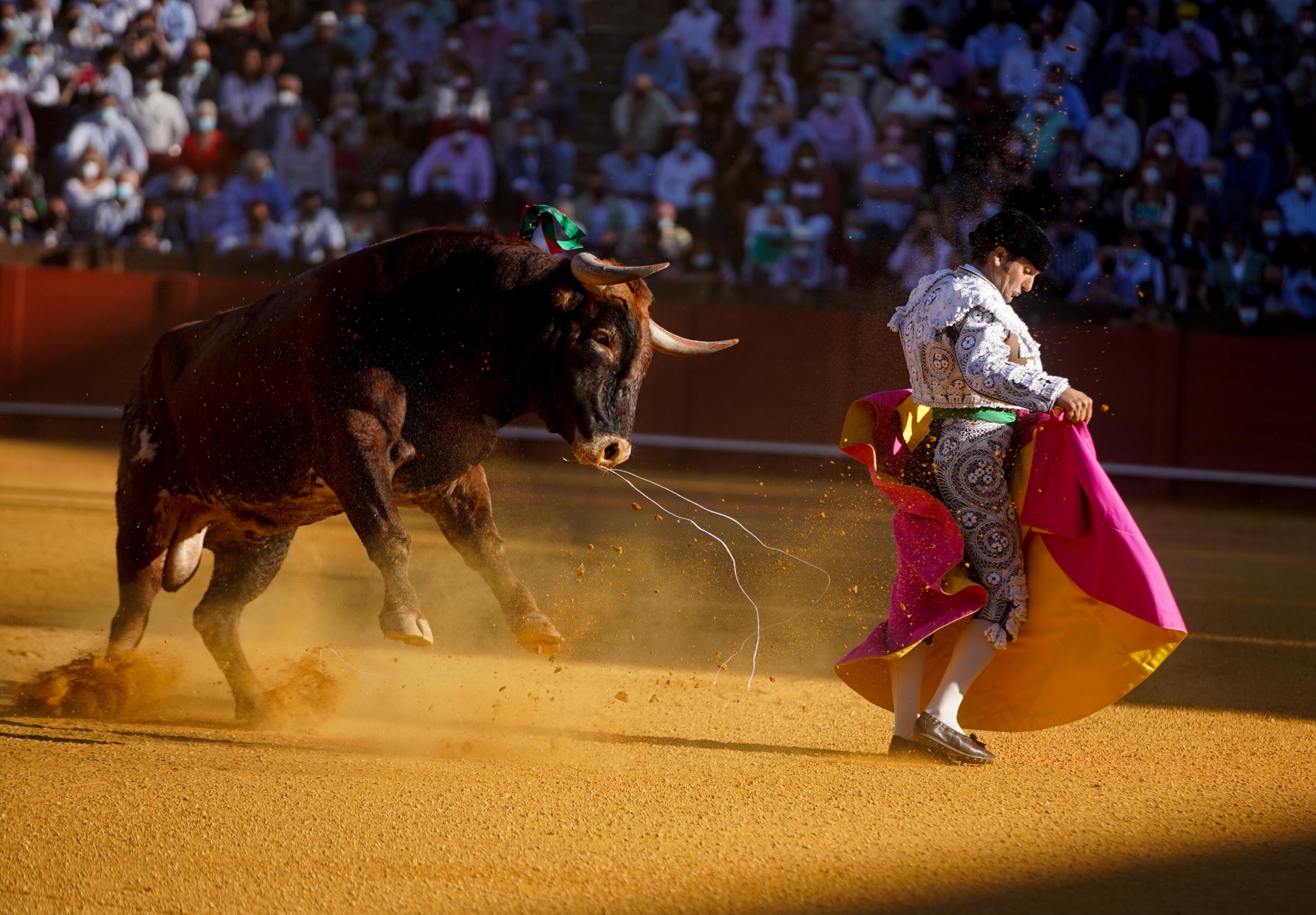 Imatge d'arxiu de toros a Sevilla | Europa Press
