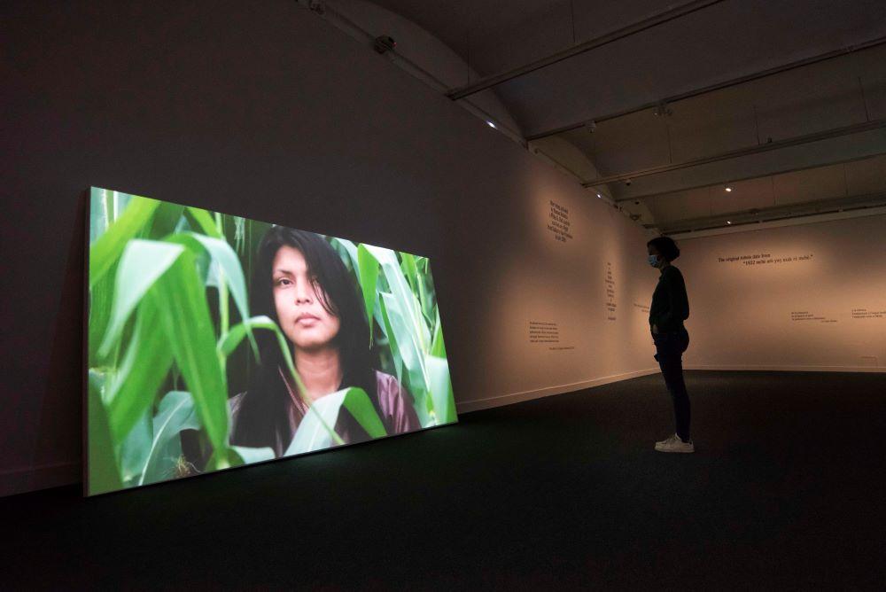 Vista de l'exposició YWY. Visions. Pedro Neves Marques, en col·laboració amb Zahy Guajajara a CaixaForum Barcelona. Foto: Fundació La Caixa