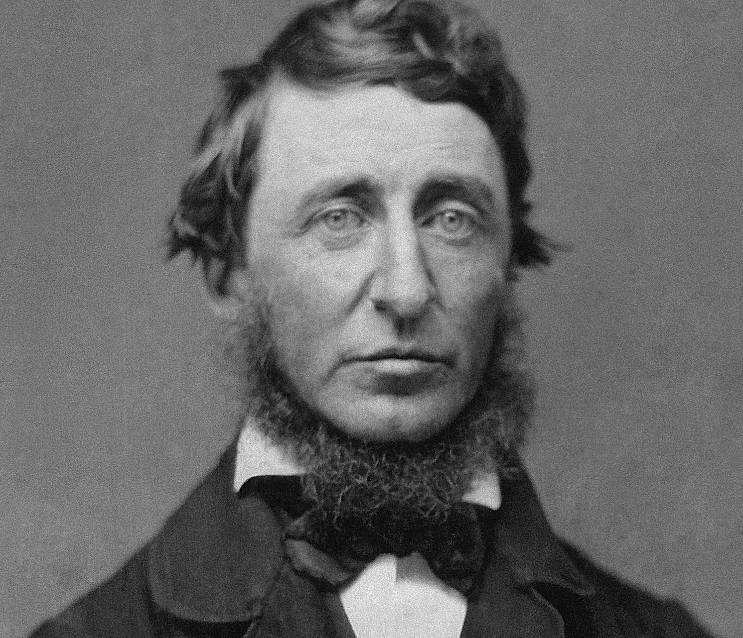 Henry David Thoreau Foto: Domini Públic