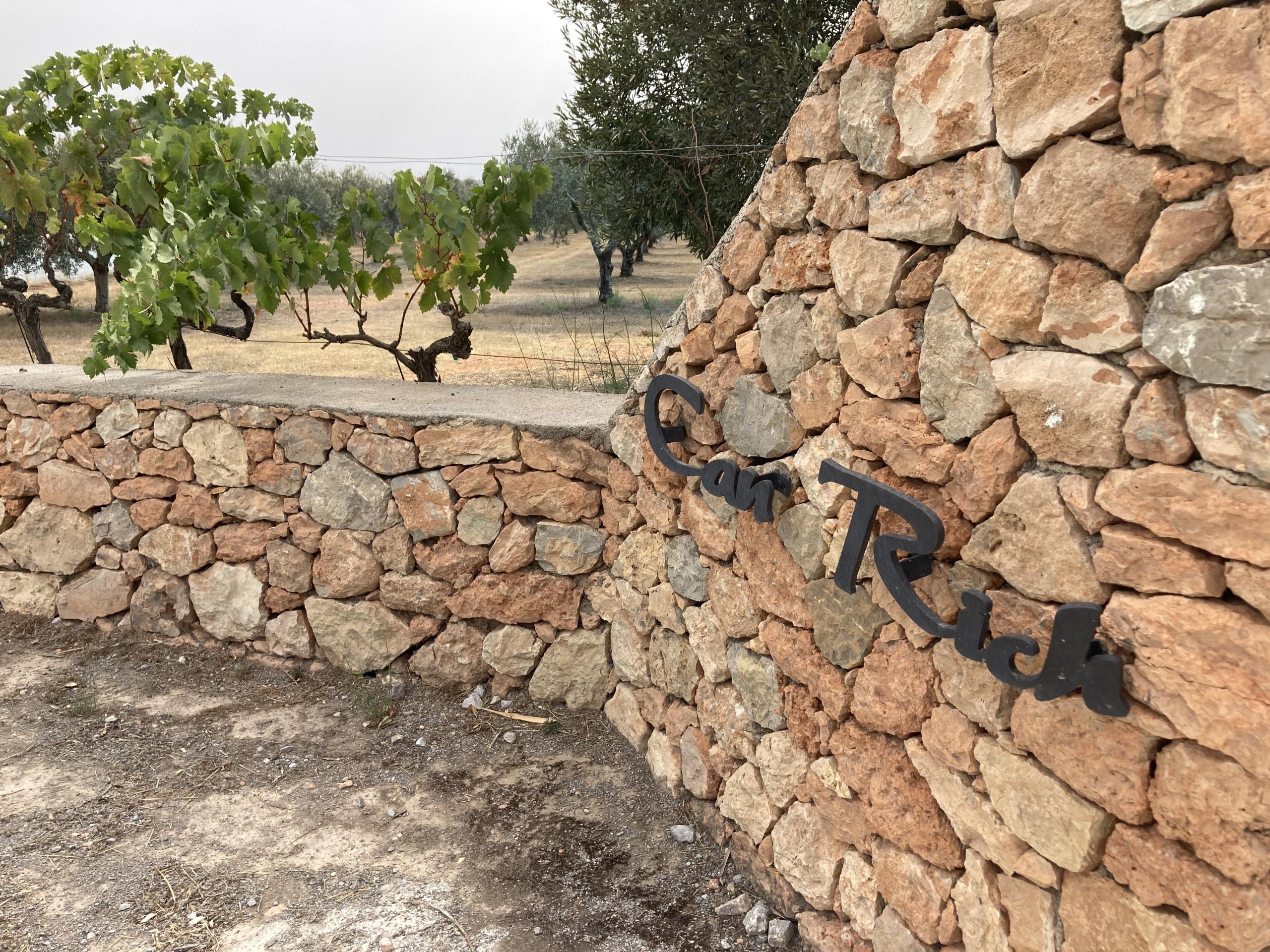 Can Rich, celler d'Eivissa | E.V.