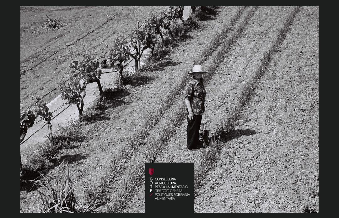 Cartell del II concurs de fotografia de la dona rural