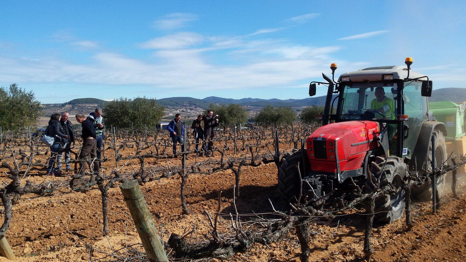 Els tècnics de Vilarnau i Codorníu analitzen la recollida de la biomassa