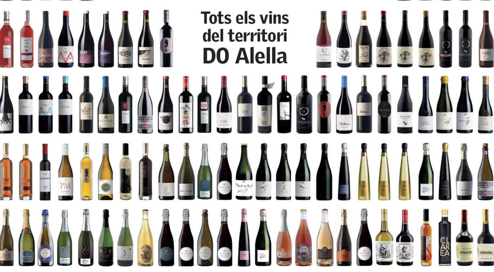 La Vinfografia dels vins d'Alella de Papers de Vi