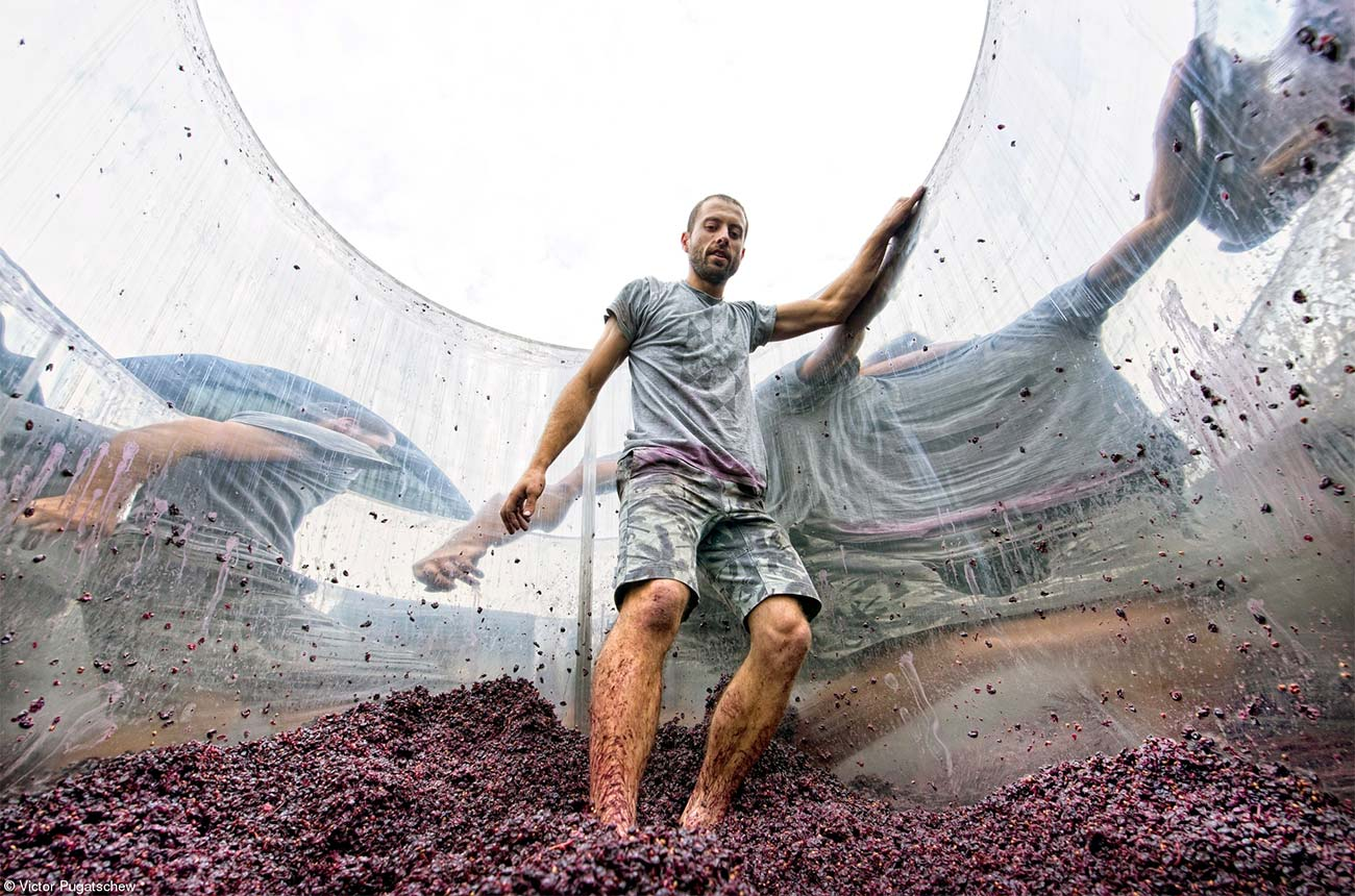 Pressing the Pinot Noir. Credit: Victor Pugatschew / Pink Lady® Food Photographer of the Year 2021.