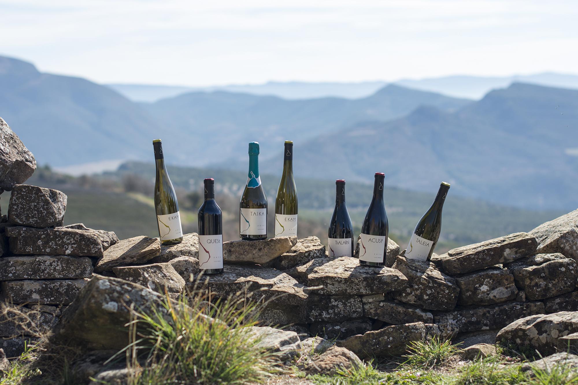 Gamma de vins de Castell d'Encús  Castell d'Encús