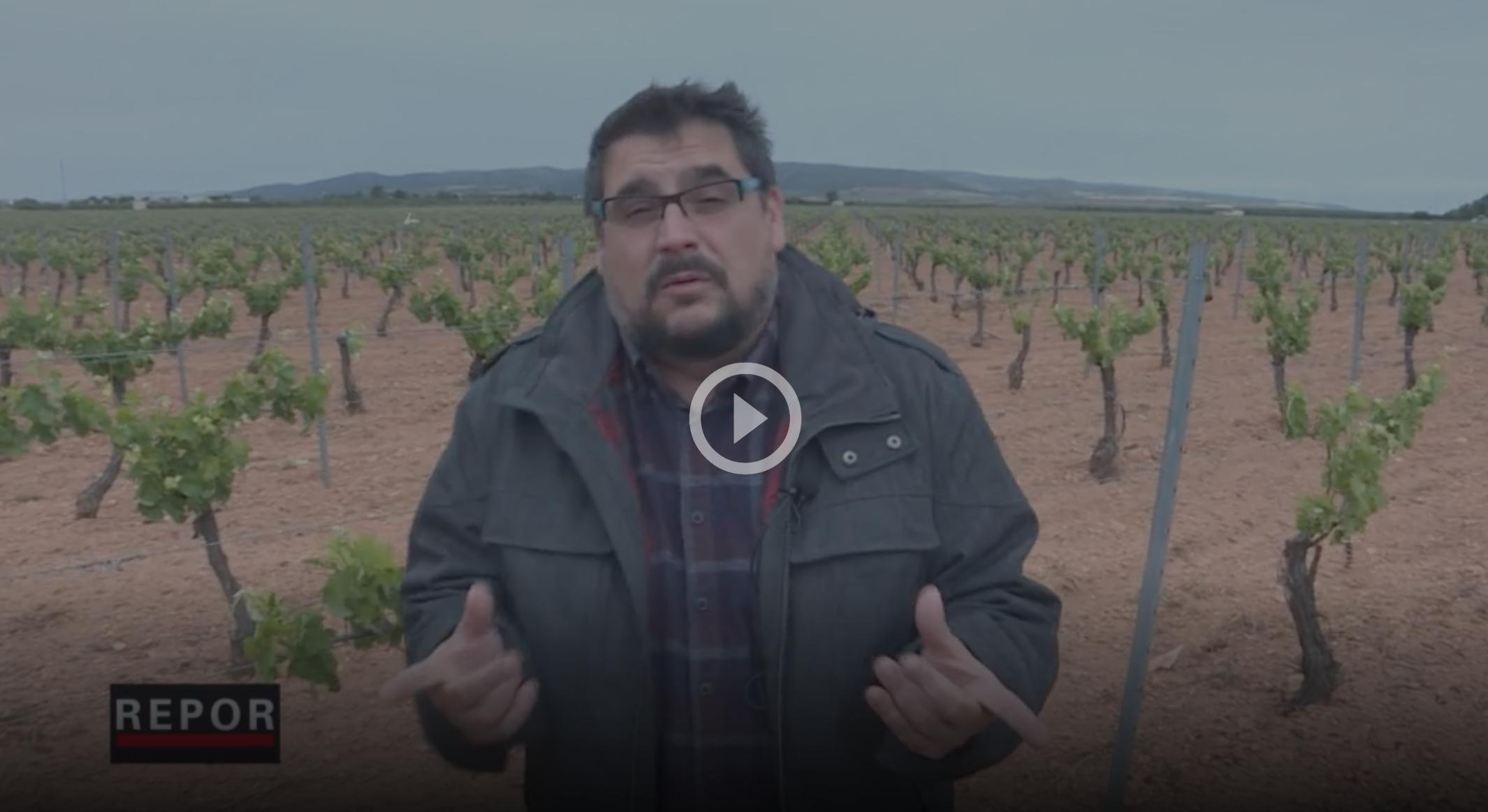 El programa REPOR analitza la situació de les DO a Espanya  captura