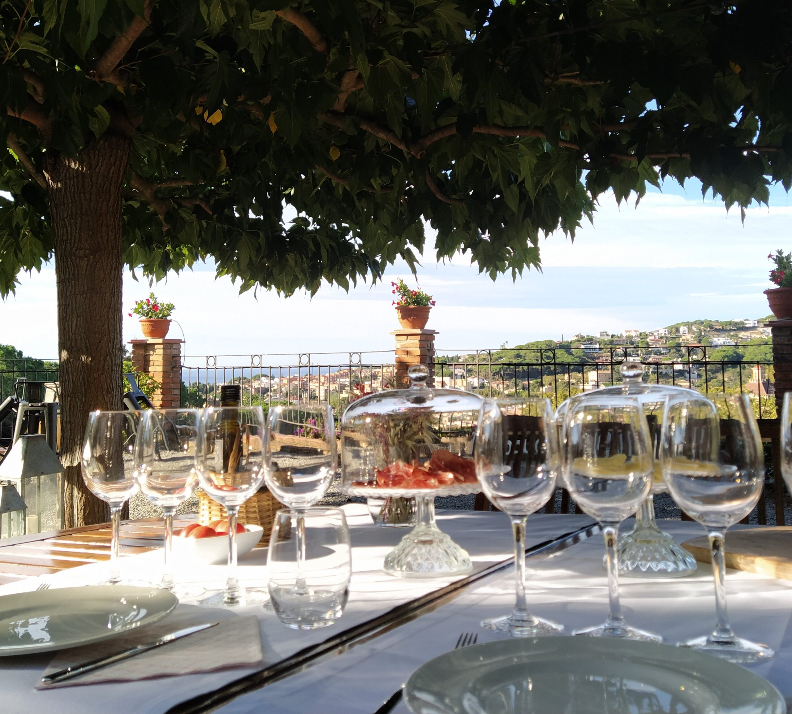 Esmorzar entre vinyes a Bouquet d'Alella | celler