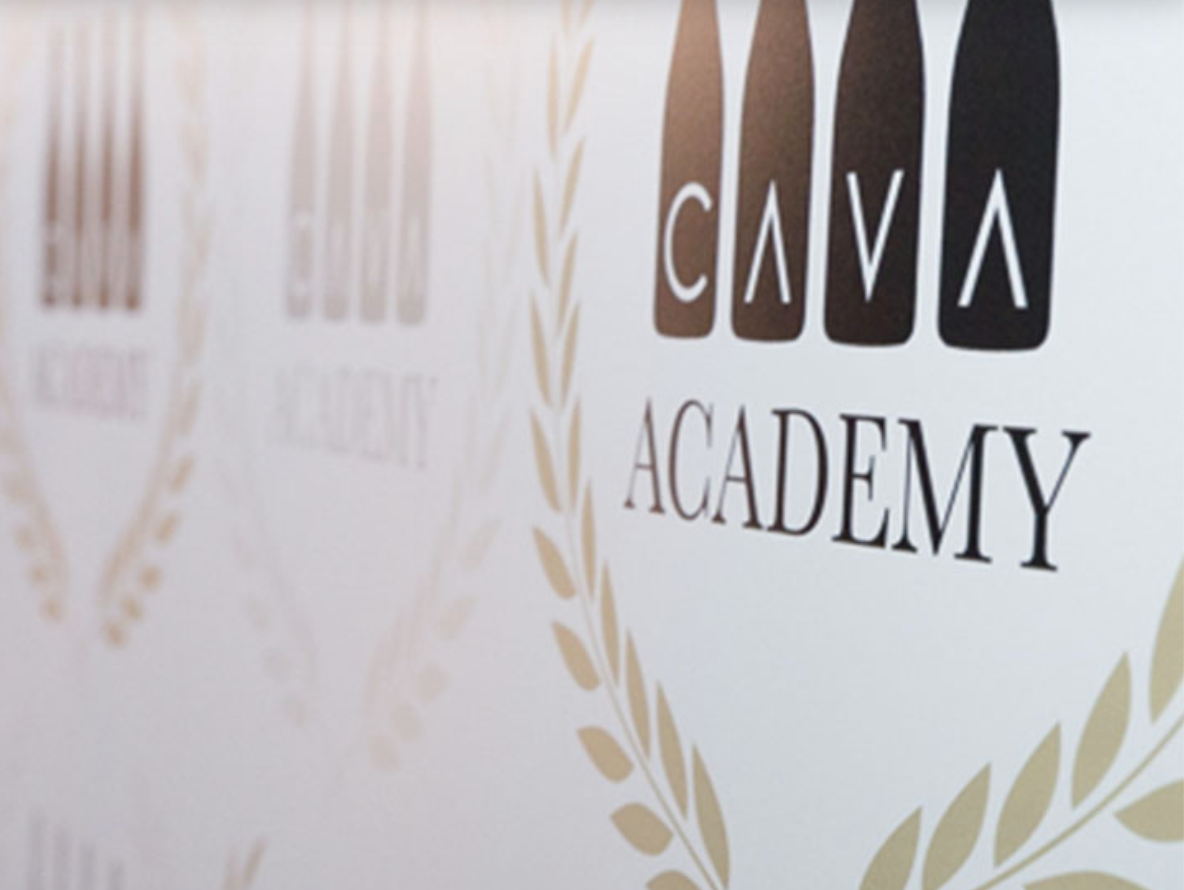 Cava Academy
