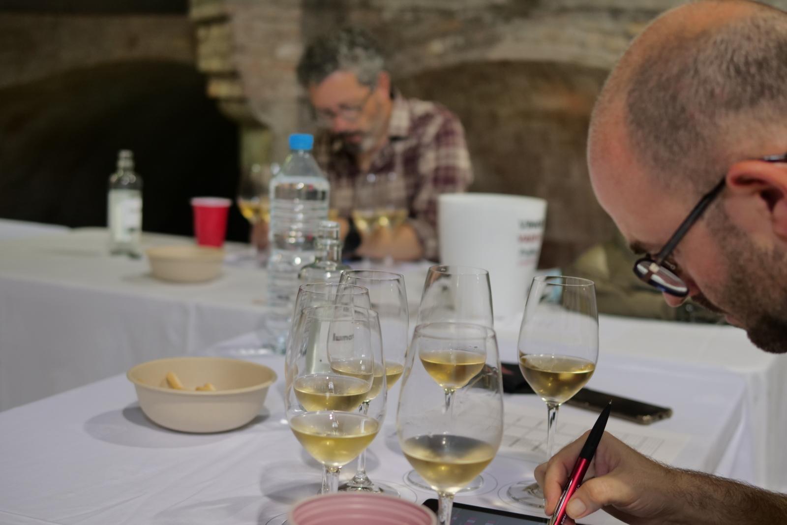 Tast Final Premis Vinari Rubí 2021 |Guillem Gandol, Vadevi