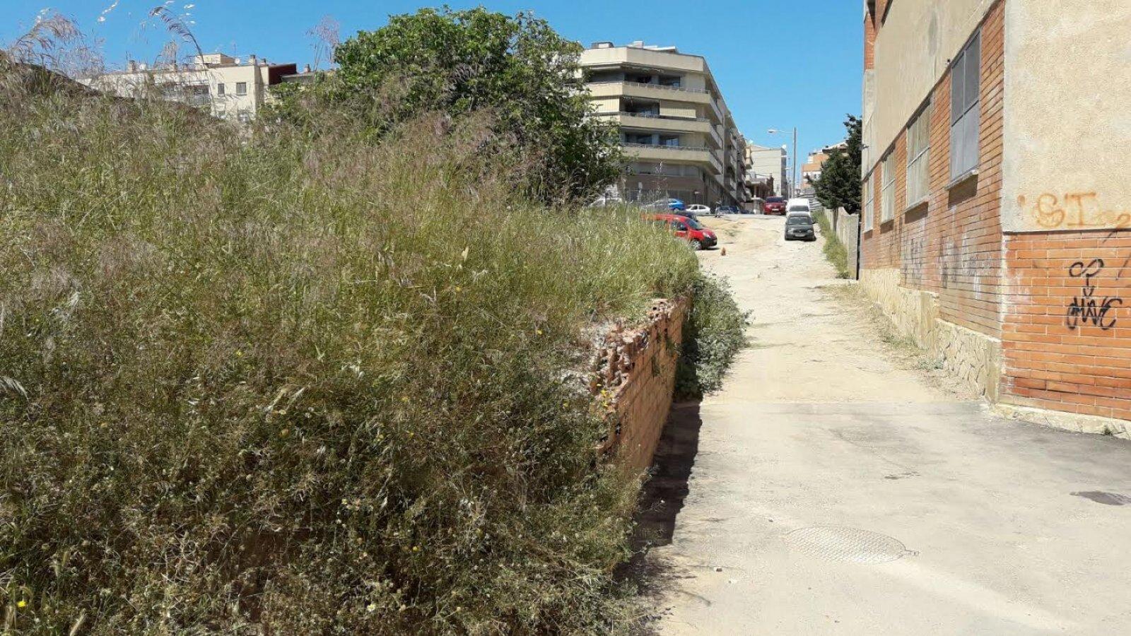 Matolls i pols, en un dels carrers sense urbanitzar