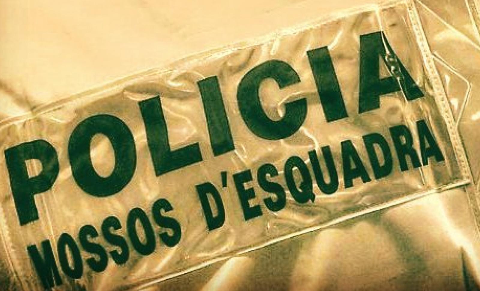 Els Mossos d'Esquadra el van detenir per intent de robatori
