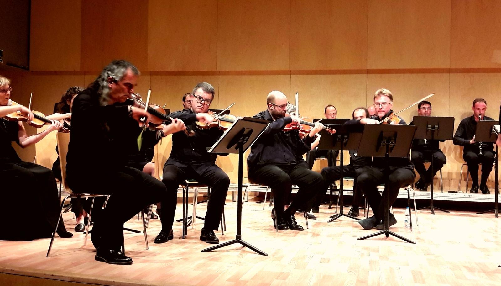 L'Orquestra de Cambra Terrassa 48