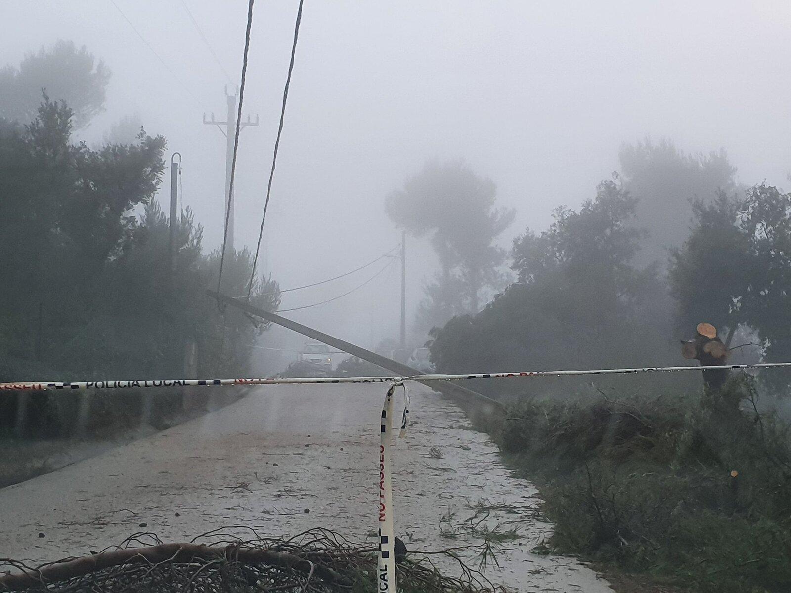 El pal elèctric que ha caigut al mig del camí de la Pineda