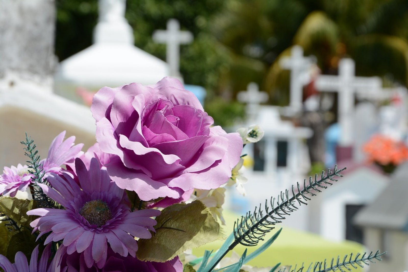 flors en un cementiri