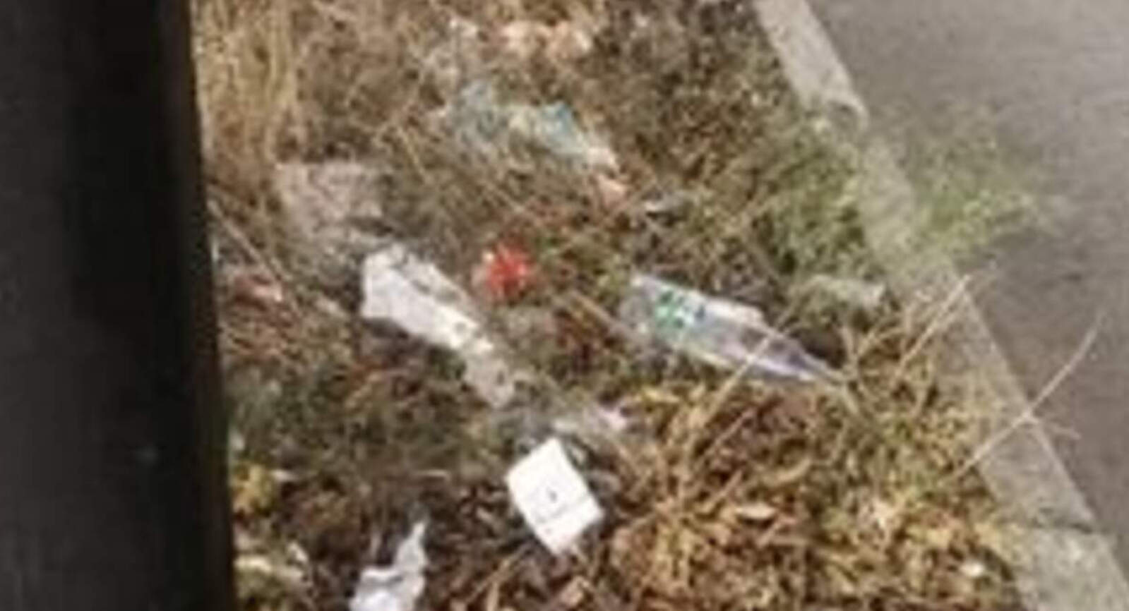 L'avinguda del Vallès plena d'herbes, plàstics i papers