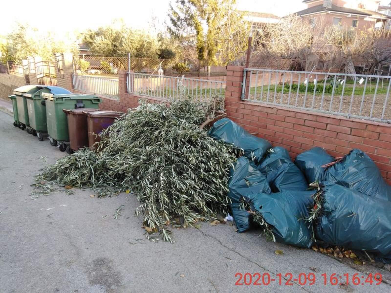 Abocament de residus de poda al costat dels contenidors