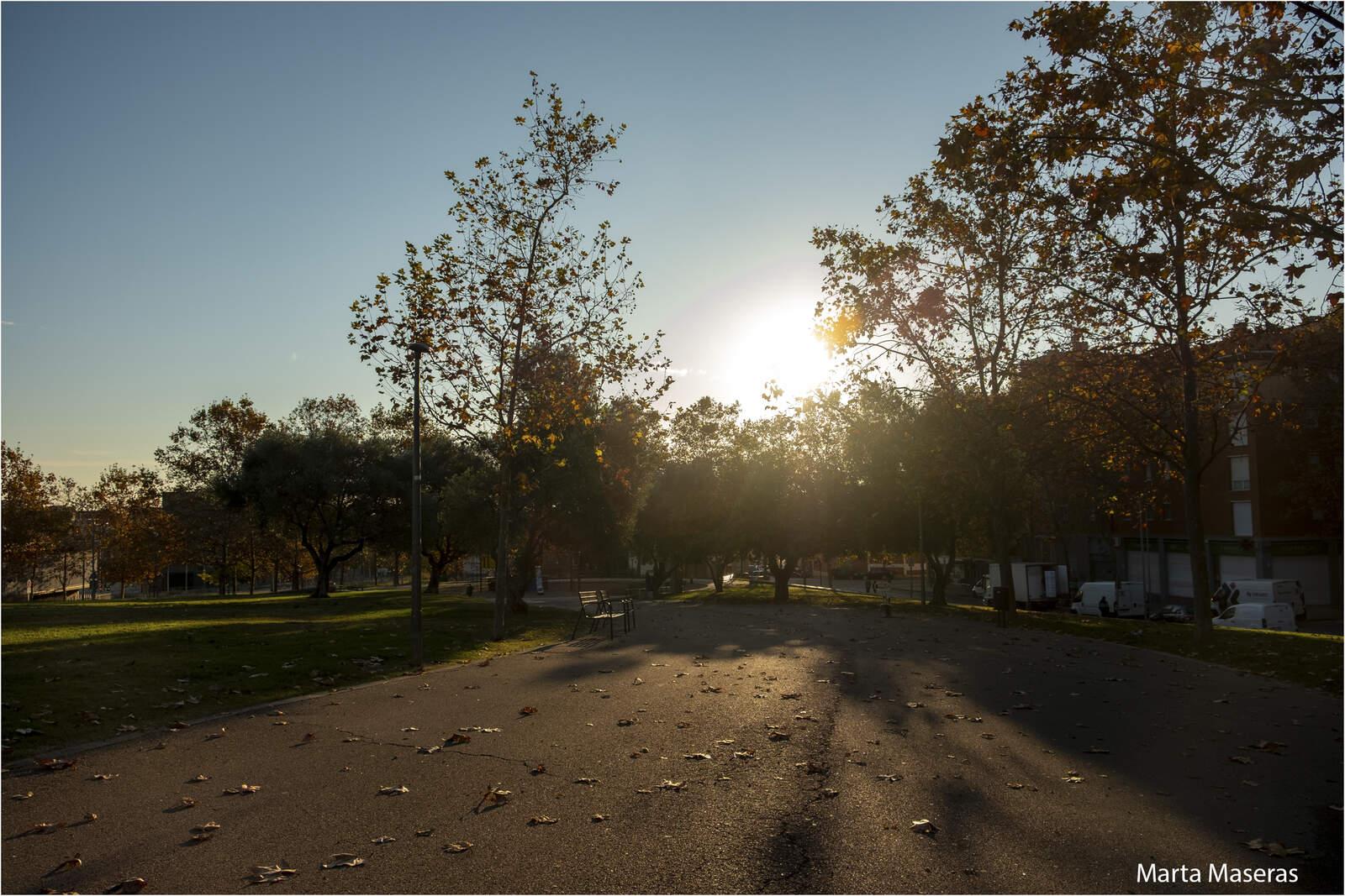 Matí de tardor al parc de Roc Blanc de Terrassa
