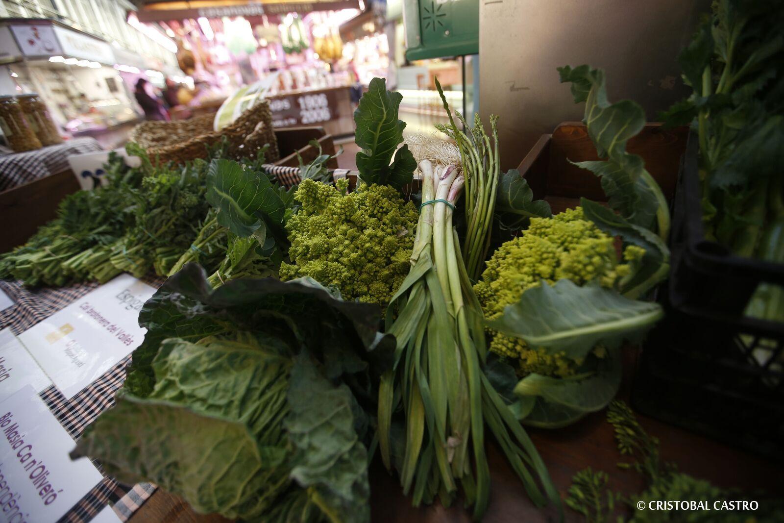 Degustació de col brotonera a Terrassa