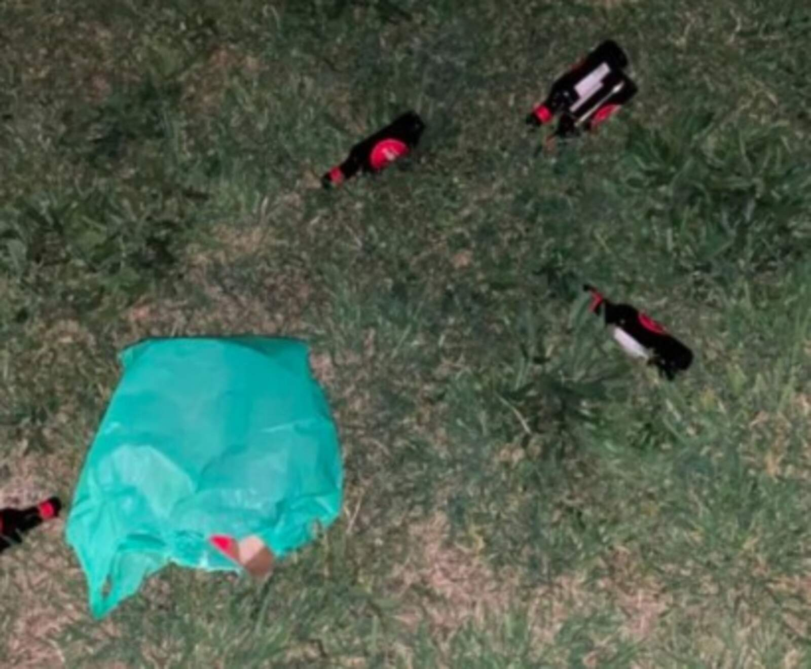 Ampolles llançades al parc
