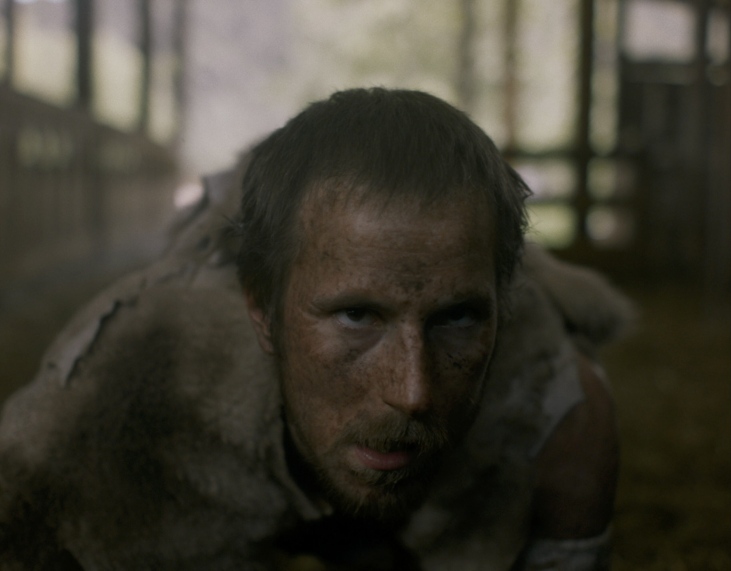 Nao Albet, que interpreta una ovella al film 'Ovella' de l'ESCAC que s'estrena al D'A/ACN