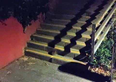 El porc espí a les escales | @protobohemio