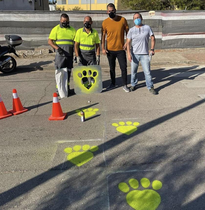 Passos especials de color verd llimona per a gats i gossos de Terrasssa/Noel Duque