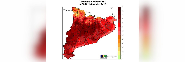 Mapa resultant de les temperatures màximes registrades aquest dissabte 14 d'agost | Meteocat