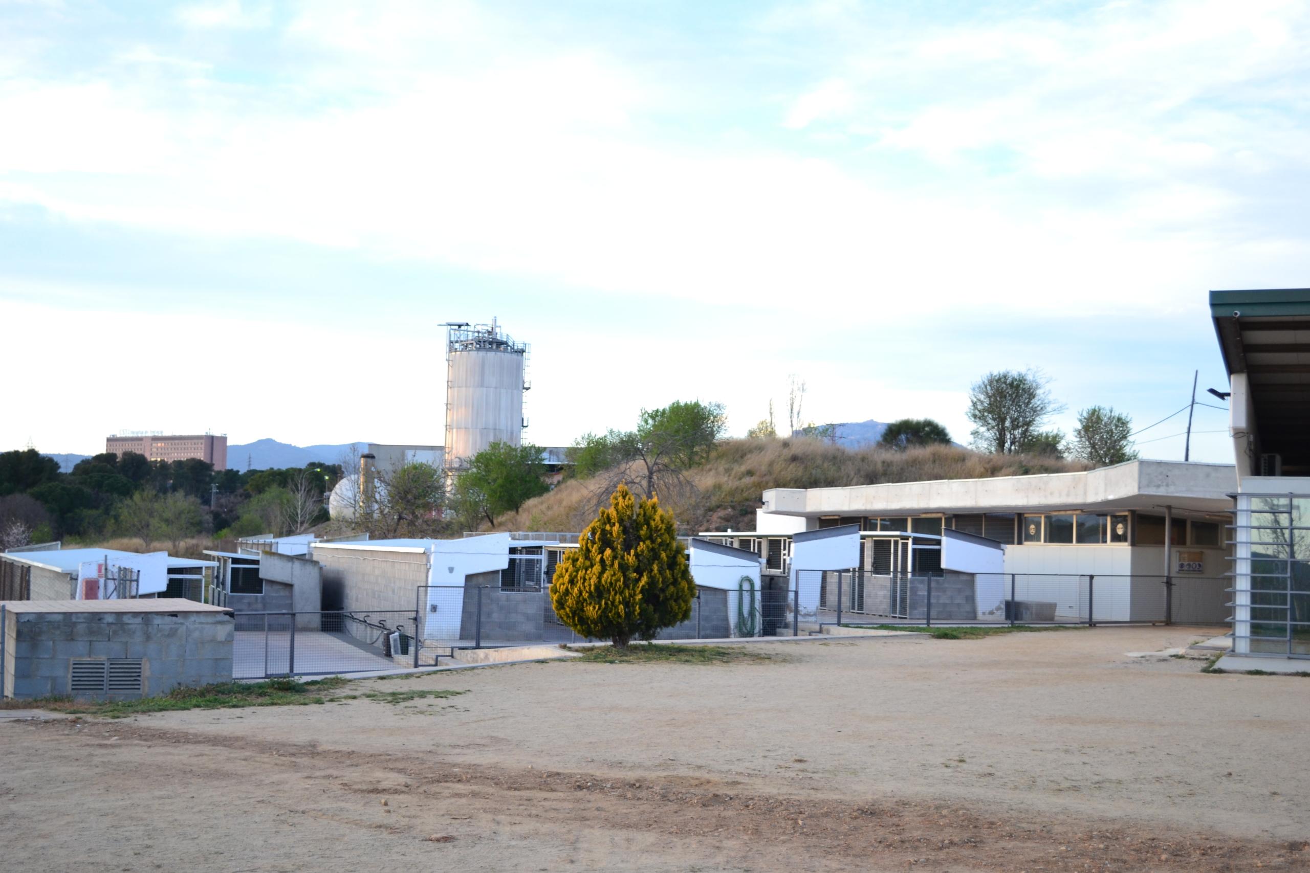 Instal·lacions del Centre d'Atenció d'Animals Domèstics de Terrassa (CAAD) | CAAD