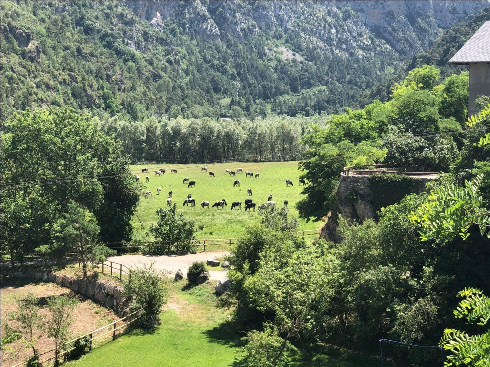 La gran SAT la Reula - Fígols d'Organyà (Alt Urgell)