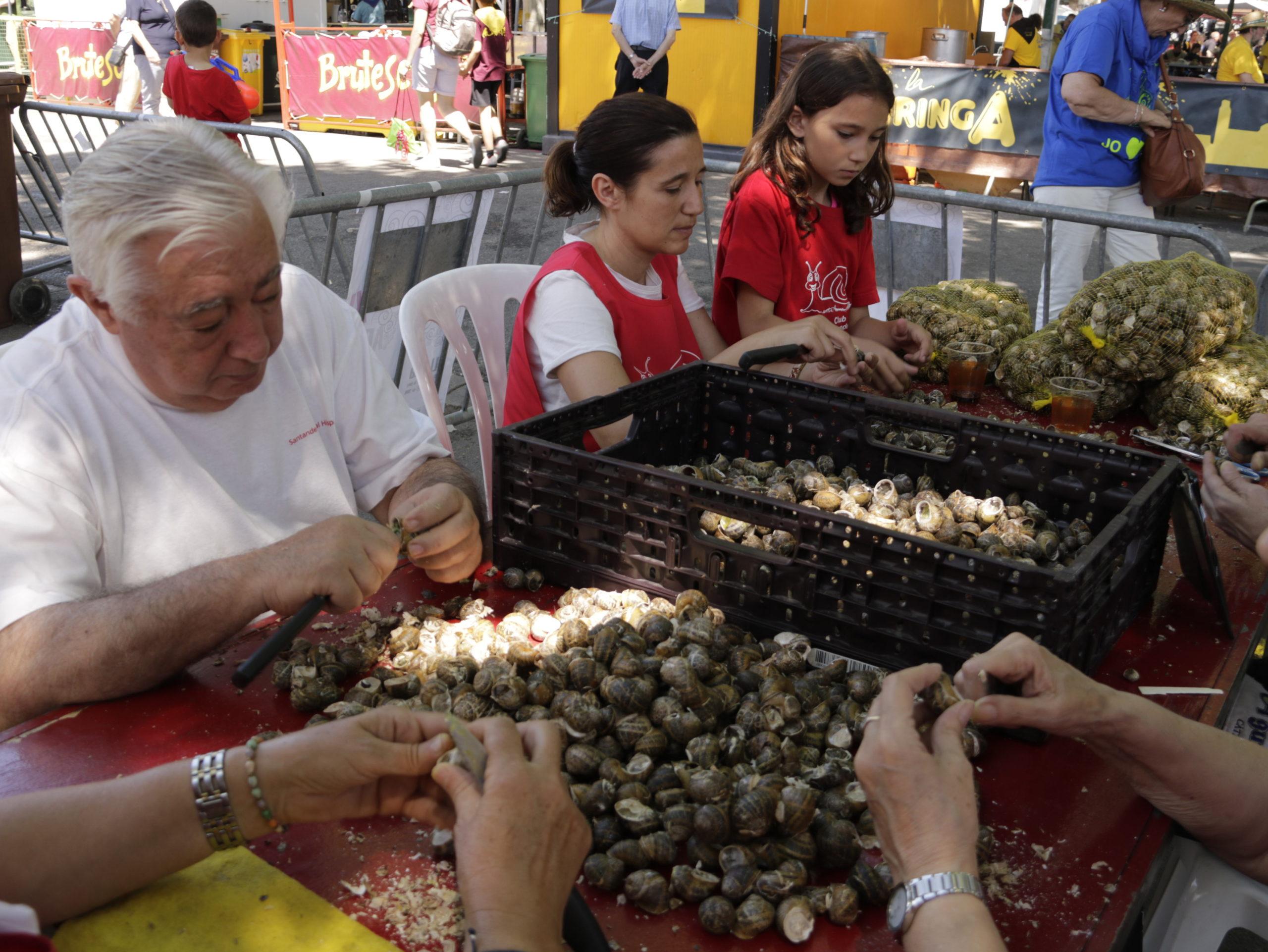 Els membres d'una de les colles de l'Aplec del Caragol de Lleida triant i netejant caragols per dinar | ACN