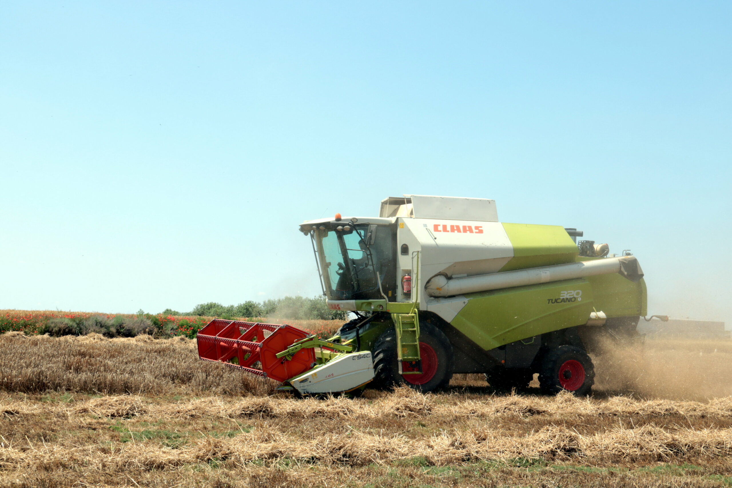Una màquina recol·lectant ordi en una finca del municipi d'Alfés   ACNd'una màquina recol·lectant ordi en una finca del municipi d'Alfés, el 26 de maig del 2020. (Horitzontal)