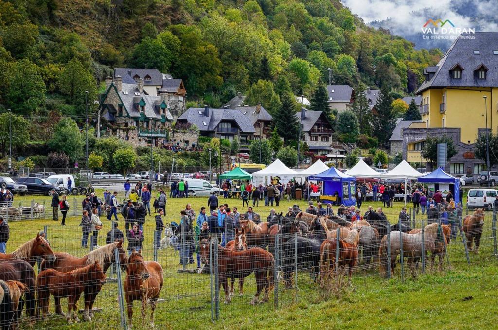 Una fira ramadera celebrada a la Val d'Aran l'any 2019   ACN