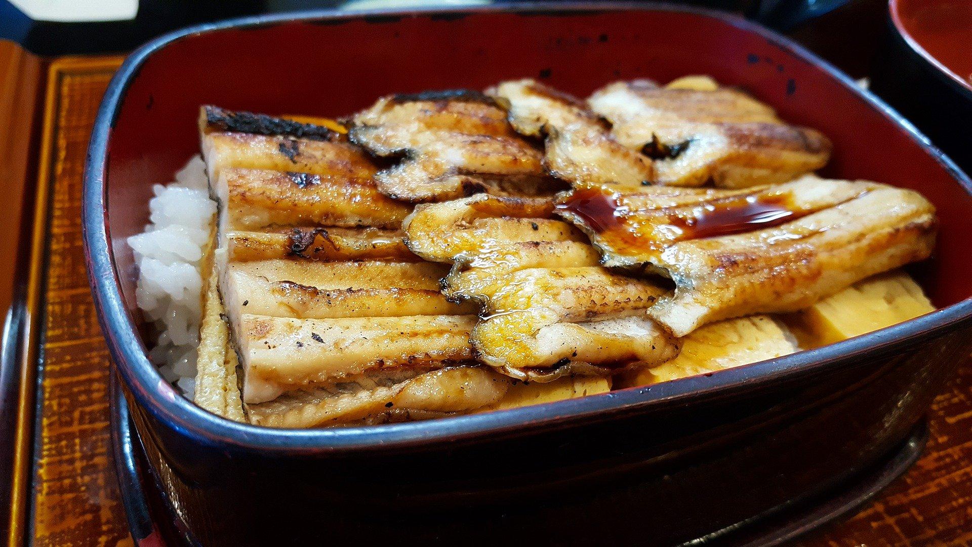 Una safata amb anguiles i arròs | Pixabay