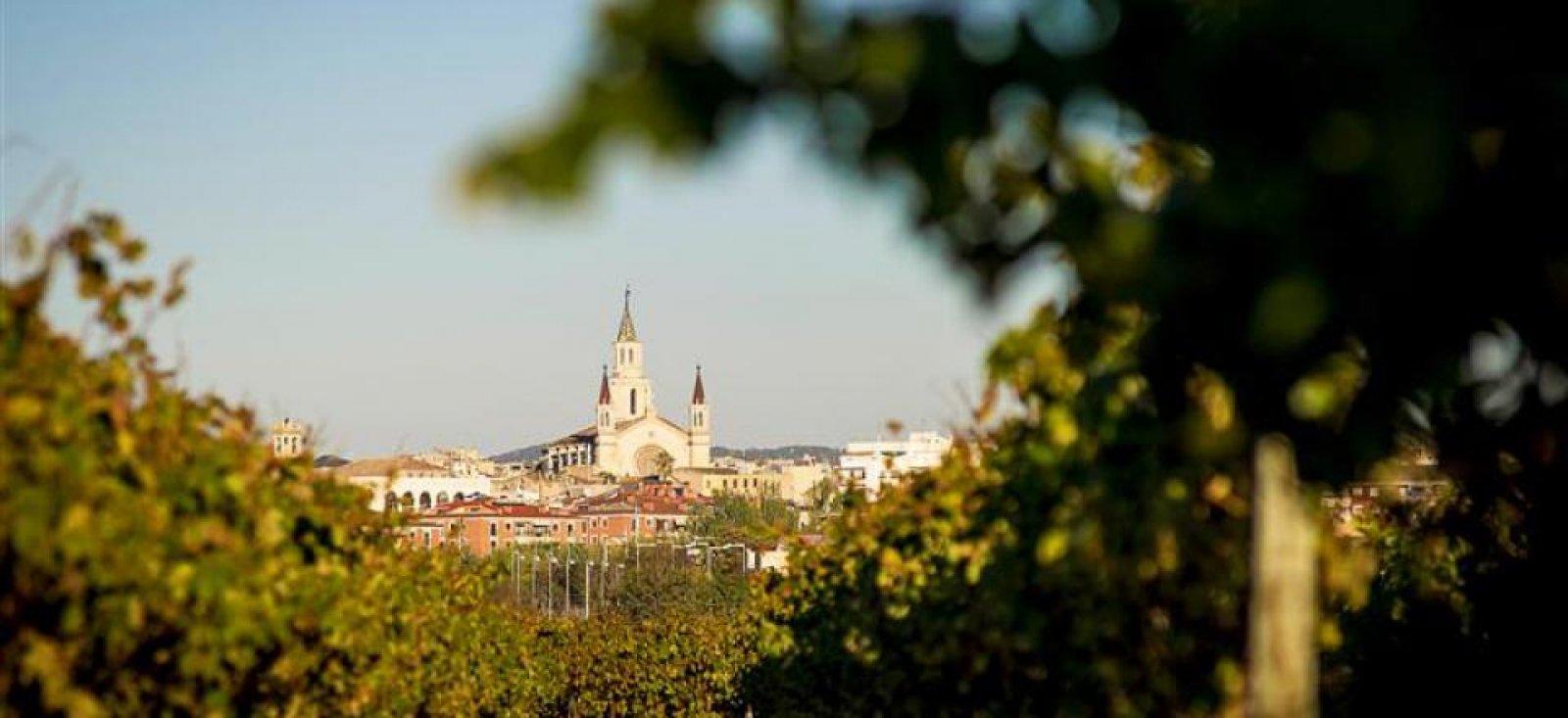 Imatge de Vilafranca del Penedès des de les vinyes