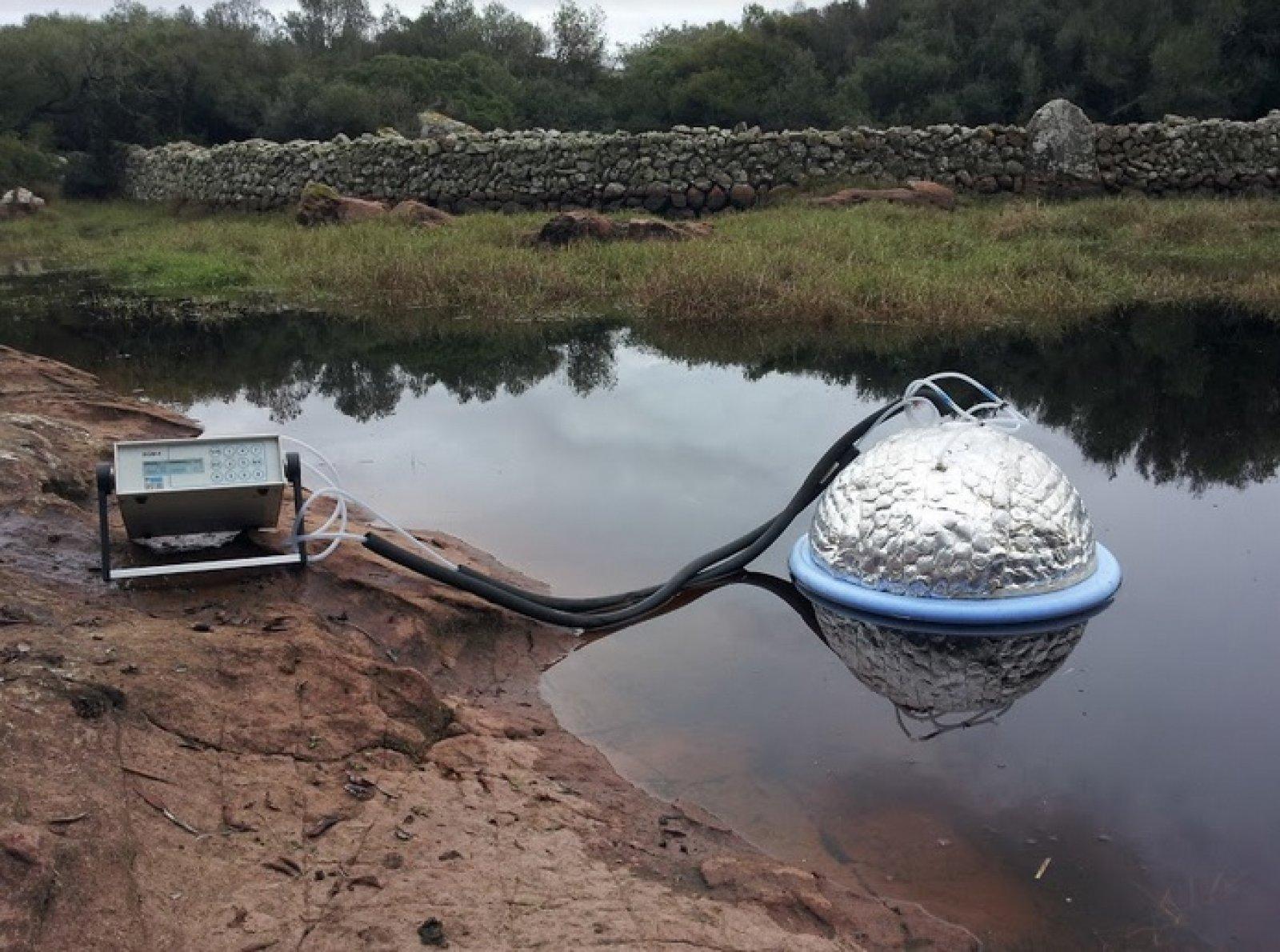 Estudi sobre les emissions de carboni en una bassa a Menorca