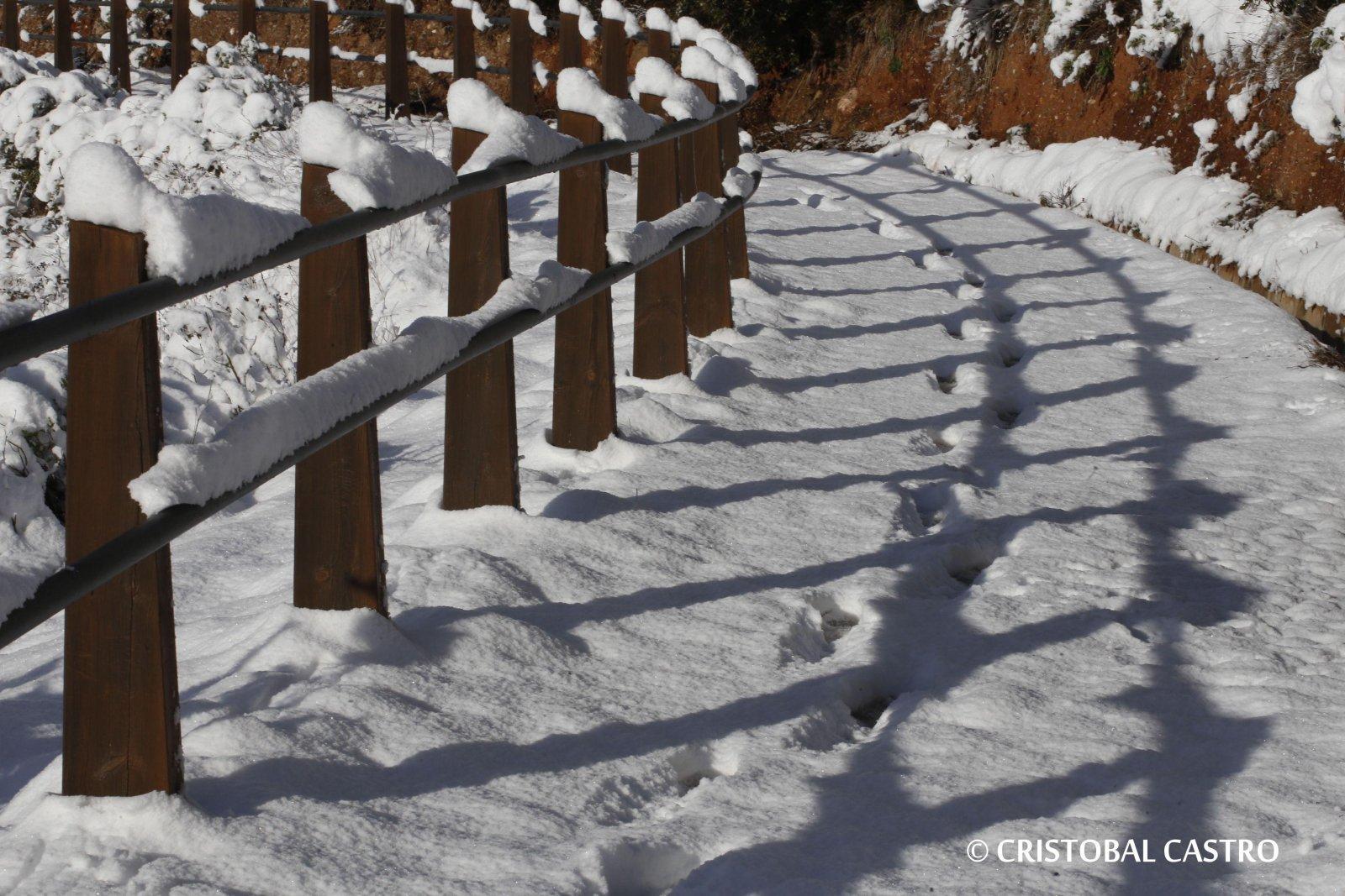 La gran nevada a Coll d'Estenalles