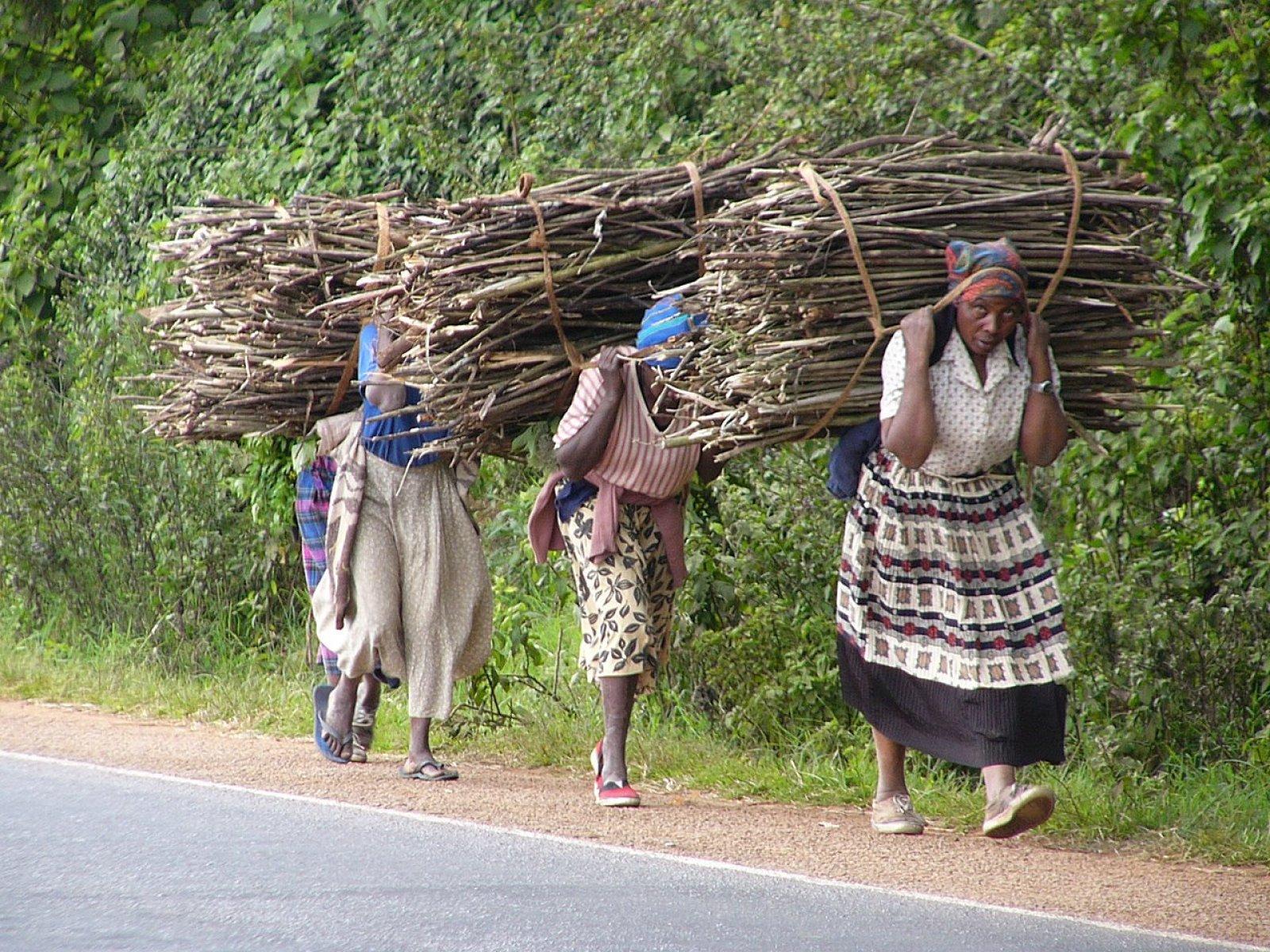 Dones africanes carregant llenya