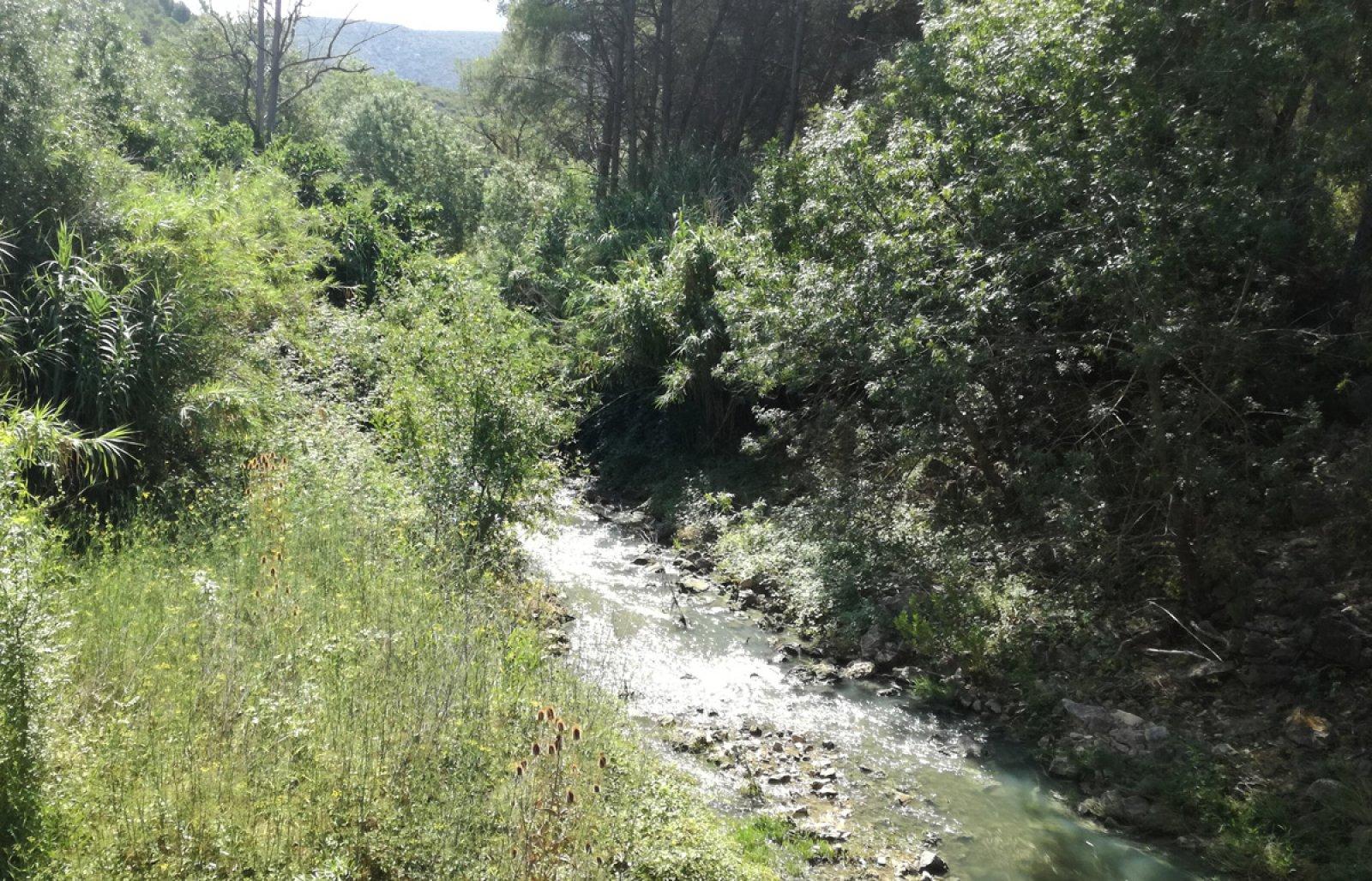 El riu Foix més avall de la presa