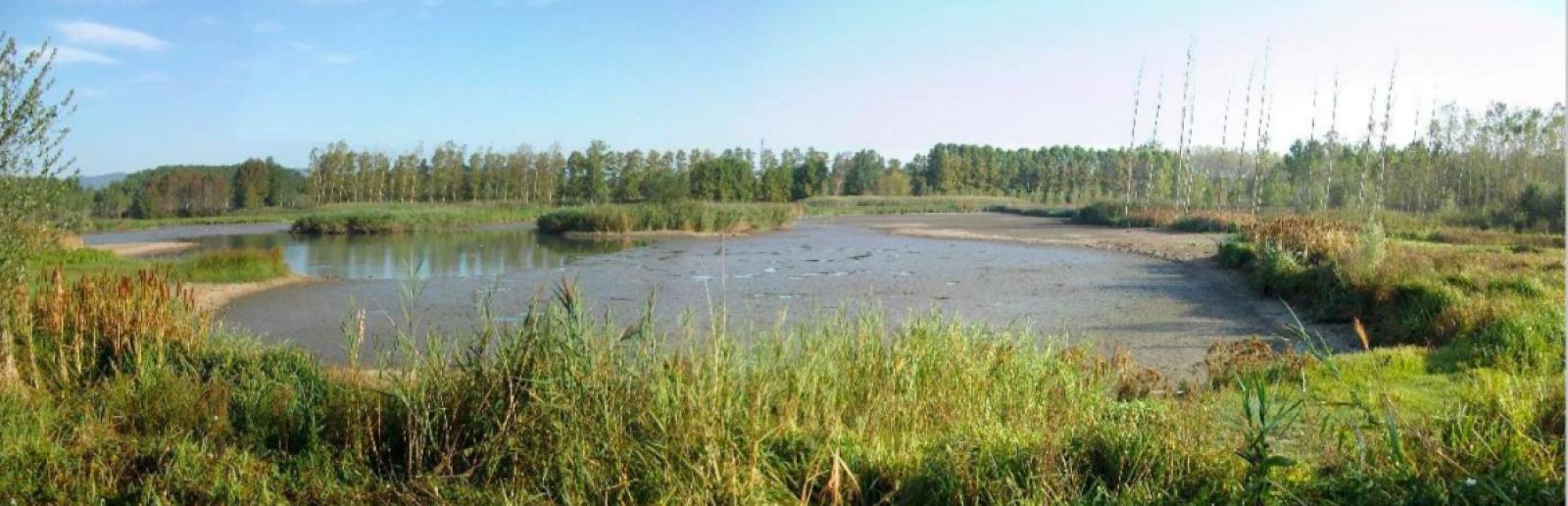 L'estany de Sils