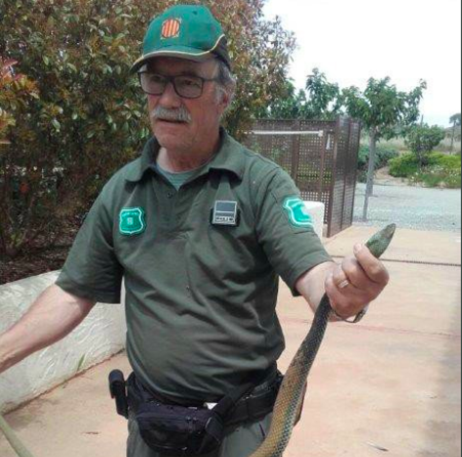 Agent Rural sostenen una serp